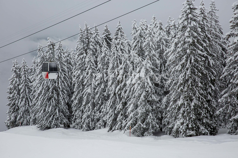 Fresh snow covers conifer trees on the 5th April 2019 in Laax ski resort in Switzerland.