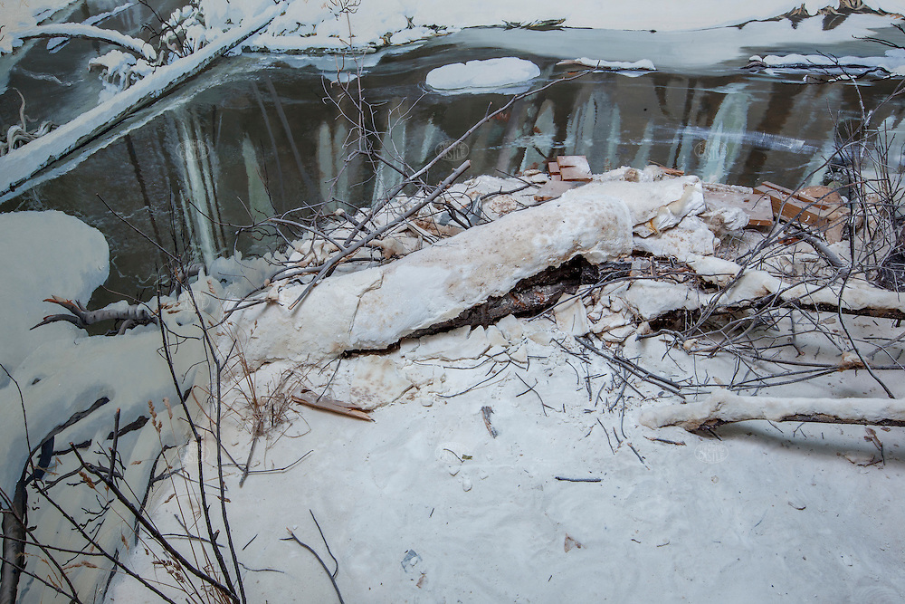 Lynx / snow scene: Taxidermy animals were originally key parts of these dioramas of nature scenes, small recreations of researched locations of the natural habitats of the full sized animal taxidermy examples.  The dioramas were hugely popular in the community and several of the 20 odd installations in the museum were relocated to the new public museum; other taxidermy animals from the installations were re-tasked at the new museum on the other side of downtown as well…hence some of these dioramas' animals are absent and the 'habitats' are damaged--this all took place in the 1980's when the museum staff relocated parts of the  dioramas to their new purposes in the new museum. Originally built from about 1938 when the first Grand Rapids Public Museum (GRPM) was completed.The original museum was founded as the 'Kent County Scientific Society' and is one of the oldest Natural History Collections in the US--founded before both the American Natural History Museum in NYC, and the Field Museum in Chicago.   From the collection the grand rapids public museum.