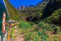 The Chihuahua al Pacifico Railroad (Chepe) train traveling between El Fuerte and the Copper Canyon, Mexico