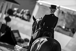 BREDOW-WERNDL Jessica (GER), TSF Dalera BB<br /> Preis des Landes Nordrhein-Westfalen<br /> Nat. Dressurprüfung Kl. S**** - Grand Prix de Dressage -<br /> Qualifikation zur Deutschen Meisterschaft der Dressurreiter<br /> Balve Optimum - Deutsche Meisterschaft Dressur 2020<br /> 18. September2020<br /> © www.sportfotos-lafrentz.de/Stefan Lafrentz