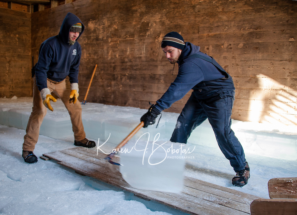 Alex Chelstowski and Derek Goldstone work in unison to pack slabs of ice into Rockywold Deephaven's Ice House during the annual ice harvest on Tuesday afternoon.  (Karen Bobotas/for the Laconia Daily Sun)