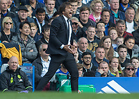Football - 2016/2017 Premier League - Chelsea V Leicester.<br /> <br /> Chelsea Manager Antonio Conte gets angry with his team at Stamford Bridge.<br /> <br /> COLORSPORT/DANIEL BEARHAM