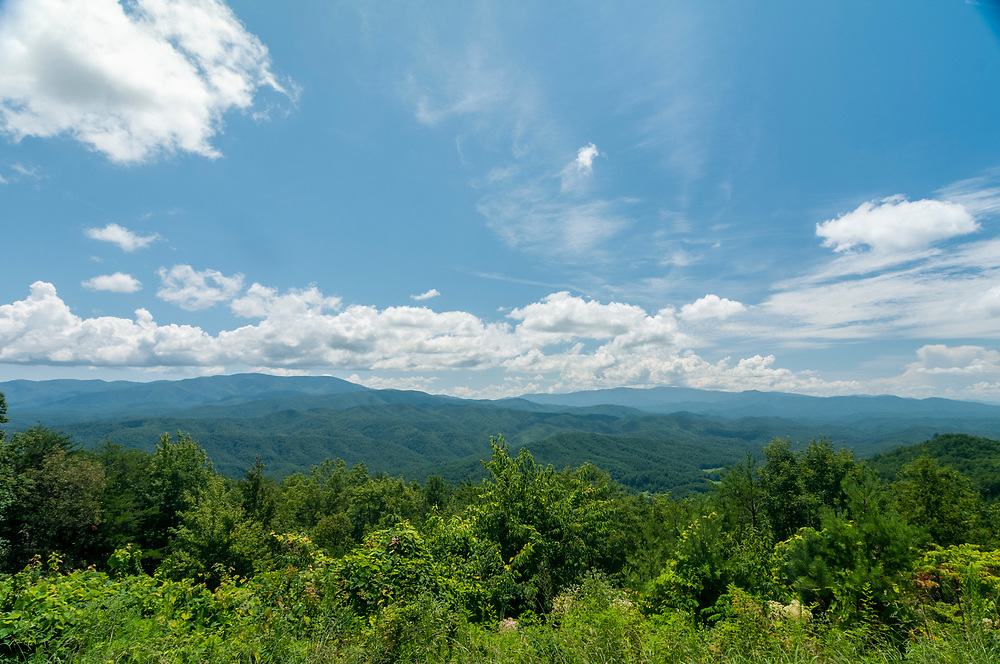 View from the Gregory Bald Overlook on the Foothills Parkway in Great Smoky Mountains National Park in Walland, Tennessee on Wednesday, August 12, 2020. Copyright 2020 Jason Barnette