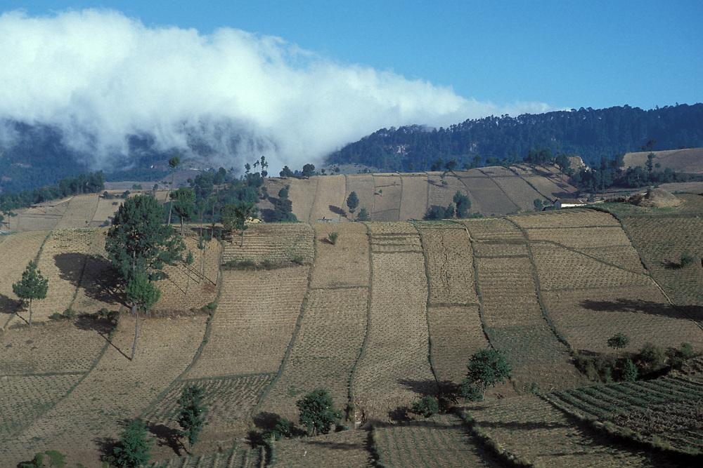 Landscape of central Guatemala with low clouds on horizon.<br /> <br /> ©Bob Daemmrich/