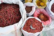 Dried chillies for sale at an early morning market in Demoso on 20th January 2016 in Kayah state, Myanmar.  A large variety of local products are available for sale in fresh markets all over Myanmar, all being sold on small individual stalls