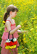 Young girl of 6 picks wildflowers in a field