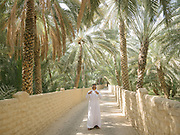 A man looks up in prayer at the Al Ain Oasis. It has been opened as the UAE's first curated UNESCO World Heritage site that visitor can experience. Spread over 1,200 hectares, nearly 3,000 acres, and containing more than 147,000 date palms of up to 100 different varieties, this impressive oasis is filled with palm plantations, many of which are still working farms.