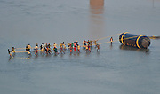 Dec. 14, 2015 - Allahabad, India - Indian labourers pull a pantoon tank as they construct  pantoon bridge.a temporary bridge over Ganges river for  the upcoming Magh Mela festival in Allahabad on December 14,2015.Hundreds of thousands of  Hindus are expected to take holy dips at the confluence of Ganges,Yamuna and mythical Saraswati rivers during the astronomically auspicious period of over 45 days celebrated as Magh Mela, which is known as a mini Kumbh Mela. <br /> ©Exclusivepix Media