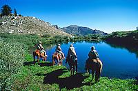 Horseback riding, Ruby Mountains, northeast Nevada USA