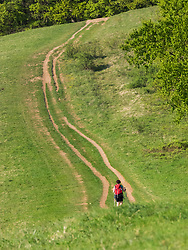 Woman hiking on footpath through meadow near Mondhalde, Baden-Wuerttemberg, Germany