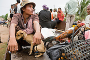 01 JULY 2006 - PHNOM PENH, CAMBODIA: A train passenger with his dog and chickens. Passengers on the Phnom Penh - Battambang train ride on a flat car. Passengers on the train ride where ever there is space, the passenger cars, the flat cars and the boxcars are all packed. While much of Cambodia's infrastructure has been rebuilt since the wars which tore the country apart in the late 1980s, the train system is still in disrepair. There is now only one passenger train in the country. It runs from Phnom Penh to the provincial capitol Battambang and it runs only one day a week. It takes 12 hours to complete the 190 mile journey.  Photo by Jack Kurtz / ZUMA Press