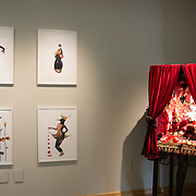 2016 Invited Artist Theme and Variations Yuliya Lanina