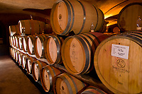 Casks in the wine cellar, Steenberg Winery, Constantia Valley (near Cape Town), South Africa