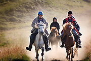 Horse riding in Southern Iceland. <br /> Hvitardalur. Apart from walking, trotting, cantering, and galloping, Icelandic horses can tölt – the word is sometimes translated as 'rack' – a four-beat lateral gait with footfalls in the same sequence as the walk, but with much greater speed and smoothness; a tölt is generally at the speed of a canter.