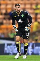 Norwich City goalkeeper Paul Jones