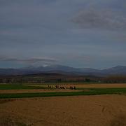 A group of migrants walk through fields towards the Greek-Macedonian border station of Idomeni, Greece.