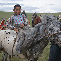Young bareback rider on his family's stallion after a 20km race at a traditional naadam festival on a remote pass in Arbulag Sum, near Muren in Hovsgol Aimag, Mongolia.