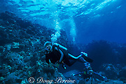 rock star Jerry Garcia of The Grateful Dead<br /> diving off the  Kona coast, Hawaii, USA ( Pacific )