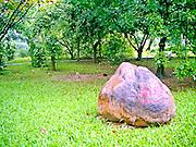 Botanical park in China