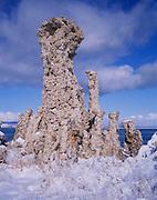 Giant Tufa Formation in Winter, Mono Lake, Mono Basin National Forest Scenic Area, California