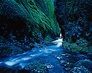 Oneonta Creek flowing through deep and narrow Oneonta Gorge, Columbia River National Scenic Area, Mount Hood National Forest, Oregon.