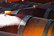Chateau St Jean d'Aumieres, Gignac village. Terrasses de Larzac. Languedoc. Barrel cellar. France. Europe. Ray of sunshine on the barriques.