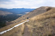 A hiker walks along an open mountain trail. Taken with a tilt shift lens to show a very narrow focus area. Missoula Photographer, Missoula Photographers, Montana Pictures, Montana Photos, Photos of Montana