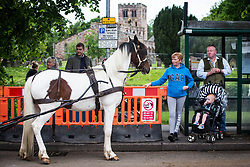 © Licensed to London News Pictures. 09/06/2017. Appleby UK. A horse waits in a bus stop at the Appleby horse fair that is taking place in the village of Appleby, the annual event dates back to the 18th century & see's travellers wash their horses in the River Eden. Photo credit: Andrew McCaren/LNP