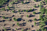 Aerial of land cleared for developement on Lake Travis, near Austin, Texas.