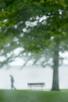 Single person walking through waterfront park in the rain, Bellingham Washington