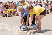 Volunteers prepares to return rehabilitated Kemp's Ridley sea turtles back into the Atlantic ocean during the release of rescued sea turtles May 14, 2015 in Isle of Palms, South Carolina. The turtles were rescued along the coast and rehabilitated by the sea turtle hospital at the South Carolina Aquarium in Charleston.