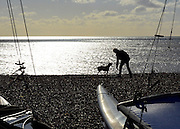 © Licensed to London News Pictures. 02/02/2013. Brighton, UK A woman walks her dog in the afternoon sunshine. People enjoy the winter sun at Brighton sea front today 2nd February 2013. Photo credit : Stephen Simpson/LNP