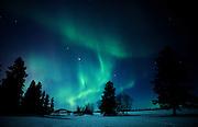 Northern lights (Aurora borealis) display<br />Birds Hill Provincial Park<br />Manitoba<br />Canada