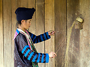 A Hmong Lai woman twisting lengths of hemp bark together to form one long yarn, Ban Chalern, Phongsaly province, Lao PDR. The yarn is wrapped around the hand in a figure of 8 creating a ball shape. Making hemp fabric is a long and laborious process; the end result is a strong durable cloth with qualities similar to linen which the Hmong women use to make their traditional clothing. In Lao PDR, hemp is now only cultivated in remote mountainous areas of the north. The remote and roadless village of Ban Chalern is situated along the Nam Ou and will be relocated due to the construction of the Nam Ou Cascade Hydropower Project Dam 7.