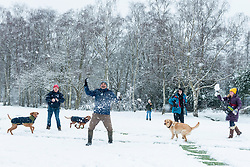 © Licensed to London News Pictures. 24/01/2021. LONDON, UK.  People having snowball fight on a snow covered golf course as the first snow fall of the year arrives in Northwood, north west London.  Photo credit: Stephen Chung/LNP