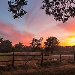 Sunset in a field in Ipswich, Massachusetts.