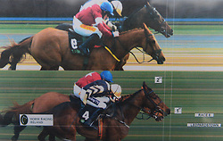 The photo finish print shows Bellshill and Ruby Walsh ahead of Road to Respect and Sean Flangan during day two of the Dublin Racing Festival at Leopardstown Racecourse.