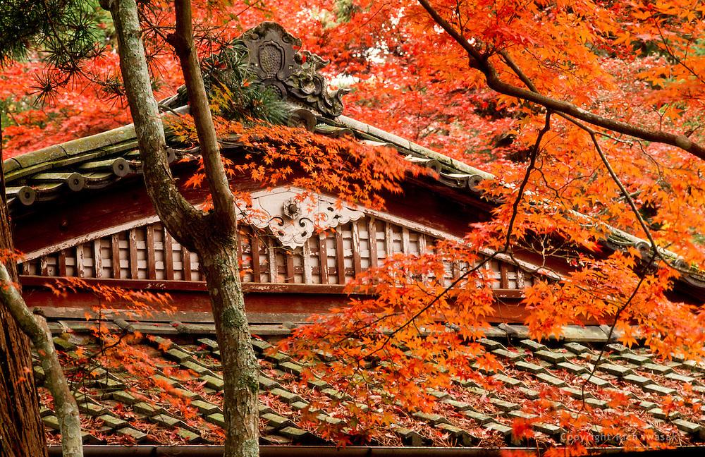 Architectural detail of teahouse roof in autumn, Itsukushima jinja (shrine), Miyajima,