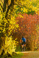 Man bicycling on the Highline Canal path on an autumn afternoon, Littleton, Colorado USA.