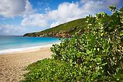 Grand Anse de Saline or Saline Beach, St. Barthelemy, FWI