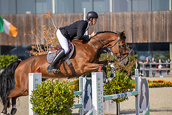 Vereecke Andres, BEL, Oepske Van Het Zonnehof<br /> Belgian Championship 6 years old horses<br /> SenTower Park - Opglabbeek 2020<br /> © Hippo Foto - Dirk Caremans<br />  13/09/2020