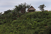 Panorama of a thatched roof home in San Jose village. Toledo Cacao Growers' Association (TCGA), San Jose, Toledo, Belize. January 25, 2013.