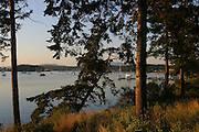 Fisherman Bay, Lopez Island, San Juan Islands, Washington<br />