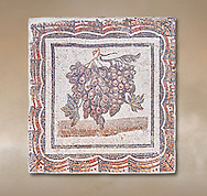 3rd century Roman mosaic panel of black and white grapes. From Thysdrus (El Jem), Tunisia.  The Bardo Museum, Tunis, Tunisia. .<br /> <br /> If you prefer to buy from our ALAMY PHOTO LIBRARY  Collection visit : https://www.alamy.com/portfolio/paul-williams-funkystock/roman-mosaic.html - Type -   Bardo    - into the LOWER SEARCH WITHIN GALLERY box. Refine search by adding background colour, place, museum etc<br /> <br /> Visit our ROMAN MOSAIC PHOTO COLLECTIONS for more photos to download  as wall art prints https://funkystock.photoshelter.com/gallery-collection/Roman-Mosaics-Art-Pictures-Images/C0000LcfNel7FpLI