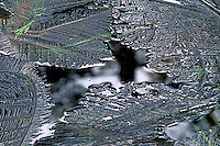 Ice formations on pond near Merced River in Yosemite National Park, CA<br />
