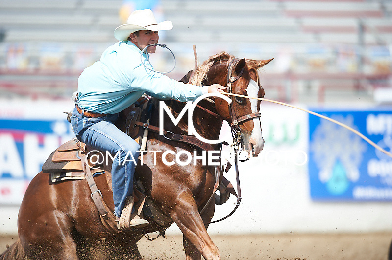 Tie-down roper Chant DeForest of Wheatland, CA competes at the Redding Rodeo in Redding, CA.<br /> <br /> <br /> UNEDITED LOW-RES PREVIEW<br /> <br /> <br /> File shown may be an unedited low resolution version used as a proof only. All prints are 100% guaranteed for quality. Sizes 8x10+ come with a version for personal social media. I am currently not selling downloads for commercial/brand use.