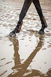Beach training<br /> WEN - Azelhof Lier 2014<br /> © Dirk Caremans