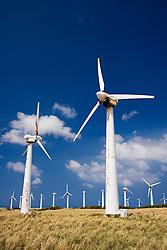 Kamoa Wind Farm, South Point, Big Island, Hawaii