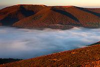 Rawki Peak in clouds, Bieszczady National Park, Poland