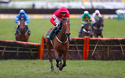 Laurina ridden by jockey Paul Townend on his way to winning the Trull House Stud Mares Novices' Hurdle during St Patrick's Thursday of the 2018 Cheltenham Festival at Cheltenham Racecourse.